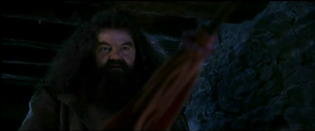 Hagrid with Pink Umbrella
